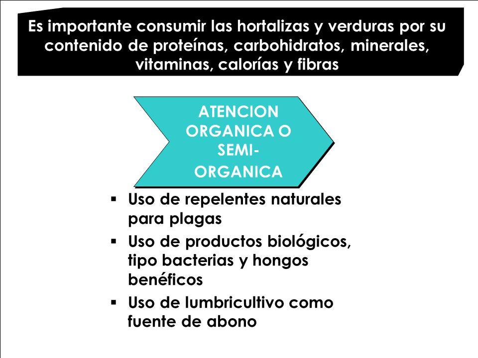 ATENCION ORGANICA O SEMI- ORGANICA ATENCION ORGANICA O SEMI- ORGANICA Uso de repelentes naturales para plagas Uso de productos biológicos, tipo bacter