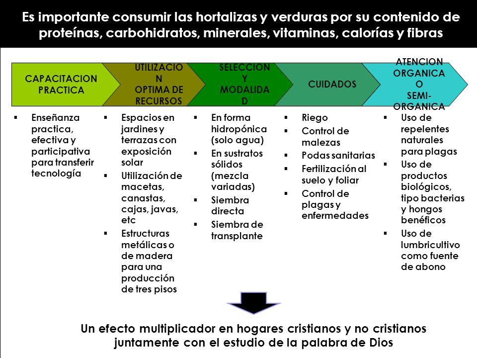 UTILIZACIO N OPTIMA DE RECURSOS SELECCION Y MODALIDA D CUIDADOS CAPACITACION PRACTICA ATENCION ORGANICA O SEMI- ORGANICA En forma hidropónica (solo ag