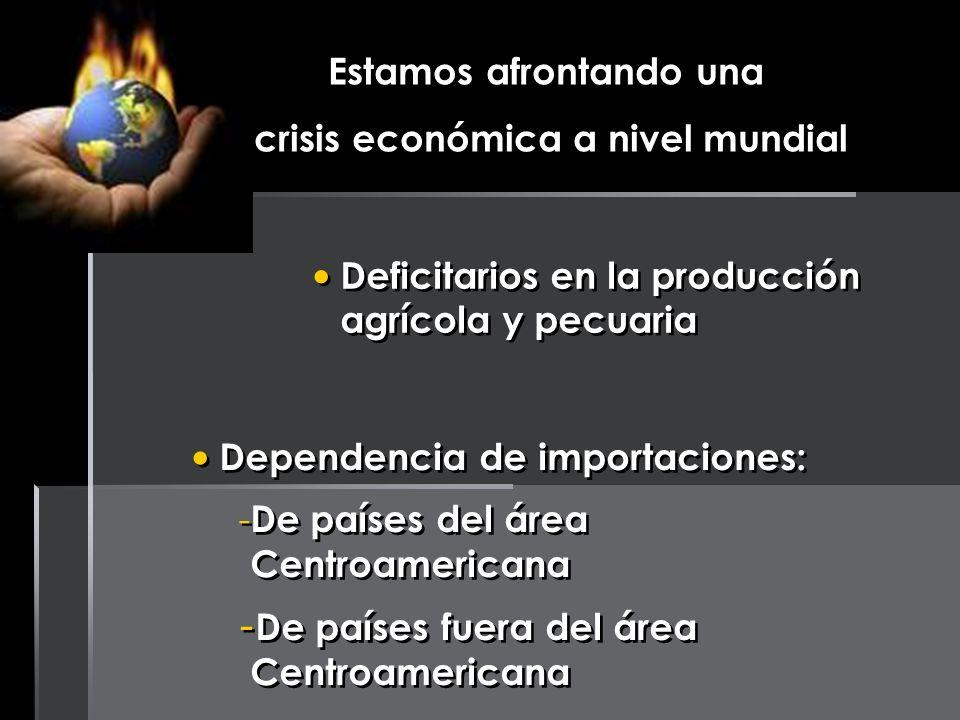 Estamos afrontando una crisis económica a nivel mundial Deficitarios en la producción agrícola y pecuaria Dependencia de importaciones: - De países de