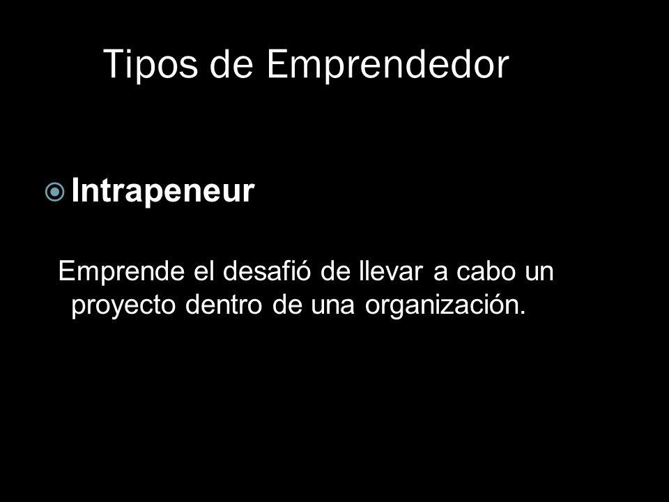 Tipos de Emprendedor Intrapeneur Emprende el desafió de llevar a cabo un proyecto dentro de una organización.