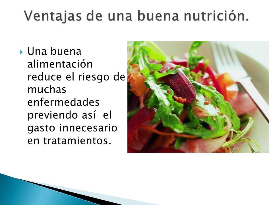 Una buena alimentación reduce el riesgo de muchas enfermedades previendo así el gasto innecesario en tratamientos.