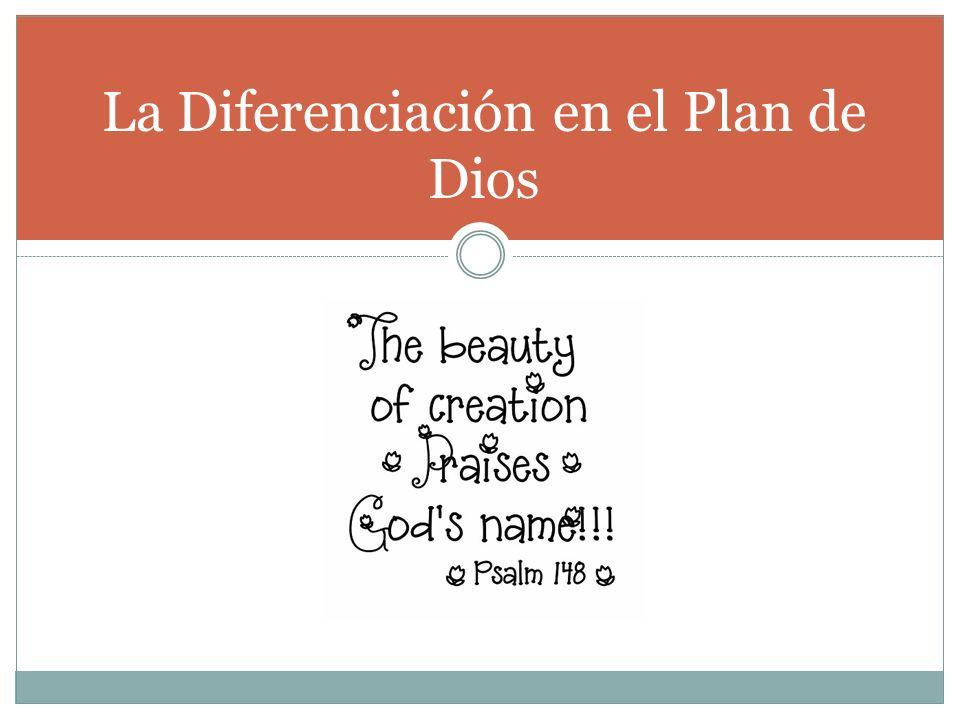. La Diferenciación en el Plan de Dios
