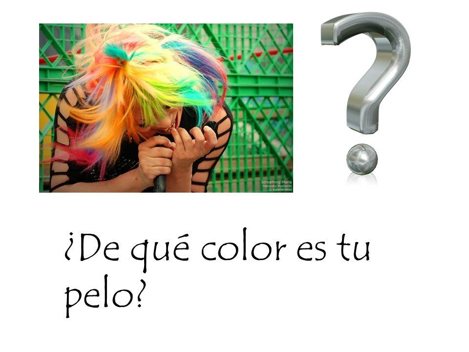 ¿De qué color es tu pelo?