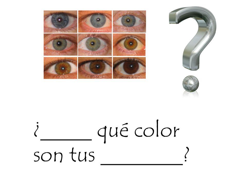 ¿_____ qué color son tus ________?