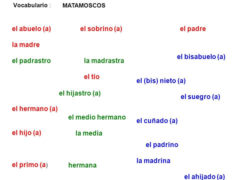 Vocabulario : el abuelo (a) el sobrino (a)el padre la madre el padrastrola madrastra el tío el hermano (a) el hijo (a) el primo (a ) el bisabuelo (a)