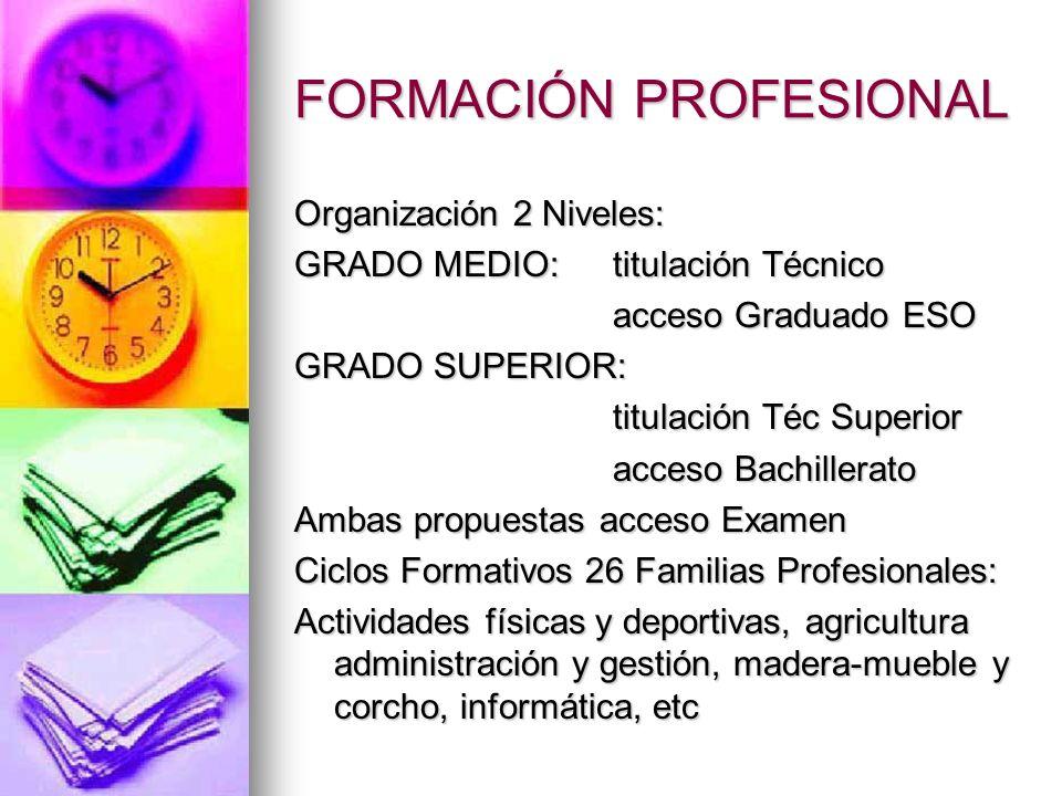 FORMACIÓN PROFESIONAL Organización 2 Niveles: GRADO MEDIO: titulación Técnico acceso Graduado ESO GRADO SUPERIOR: titulación Téc Superior acceso Bachi