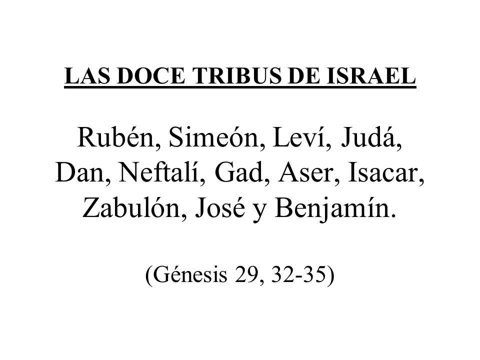 LAS DOCE TRIBUS DE ISRAEL Rubén, Simeón, Leví, Judá, Dan, Neftalí, Gad, Aser, Isacar, Zabulón, José y Benjamín. (Génesis 29, 32-35)