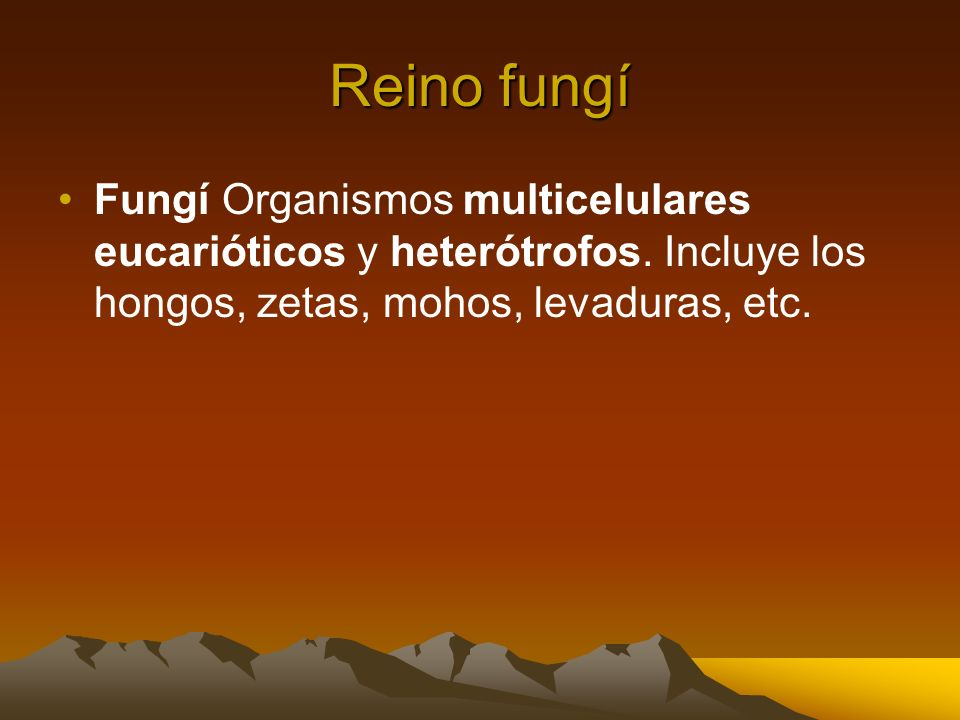 Reino fungí Fungí Organismos multicelulares eucarióticos y heterótrofos. Incluye los hongos, zetas, mohos, levaduras, etc.