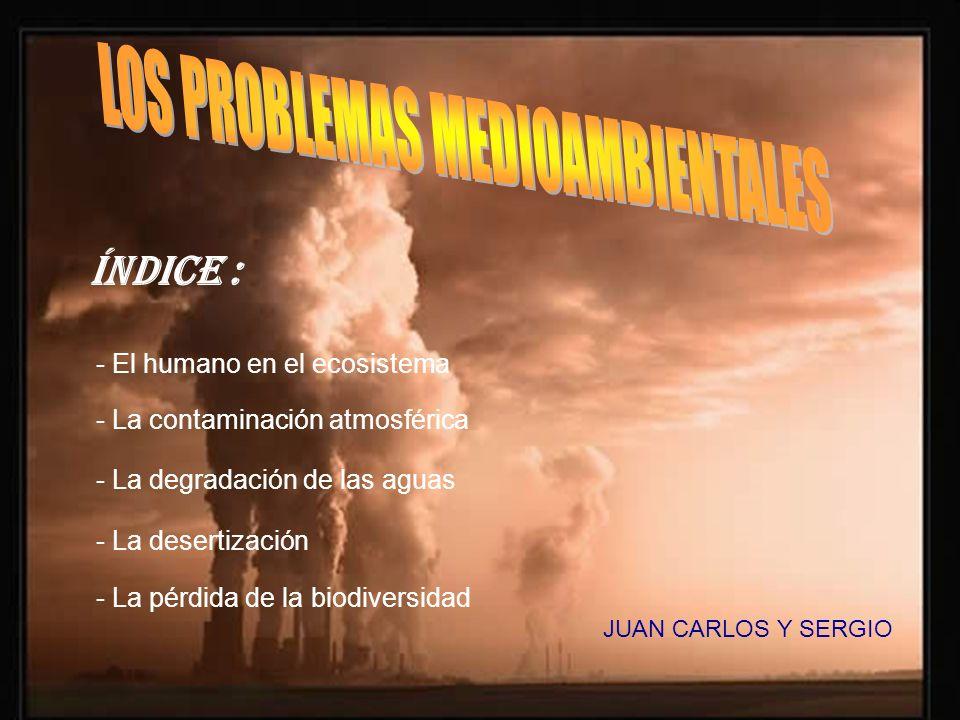 JUAN CARLOS Y SERGIO ÍNDICE : - El humano en el ecosistema - La contaminación atmosférica - La degradación de las aguas - La desertización - La pérdid