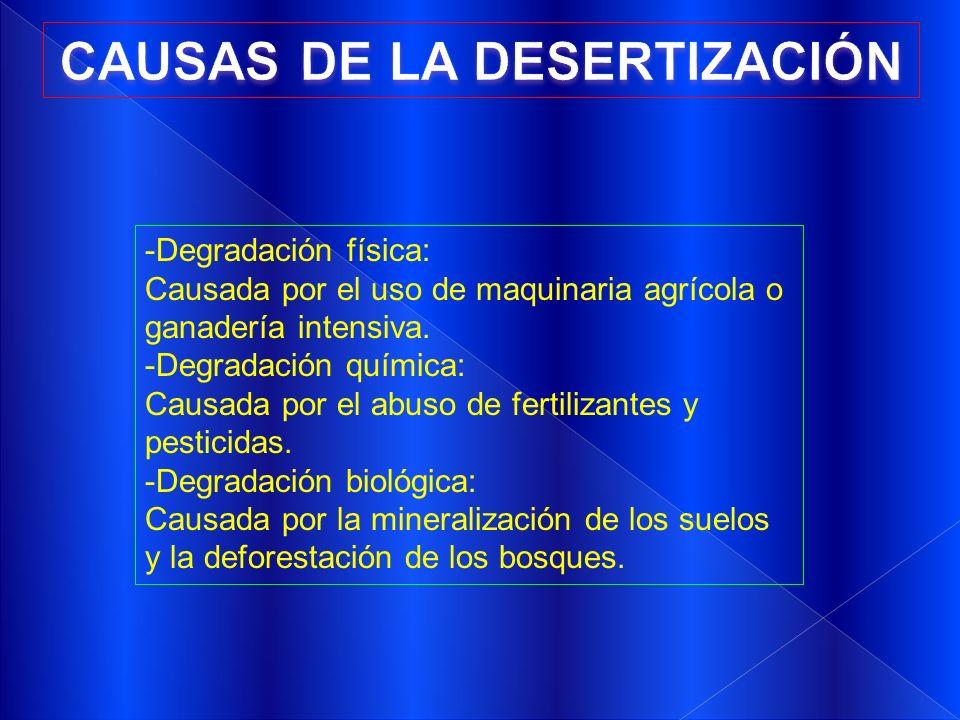-Degradación física: Causada por el uso de maquinaria agrícola o ganadería intensiva. -Degradación química: Causada por el abuso de fertilizantes y pe