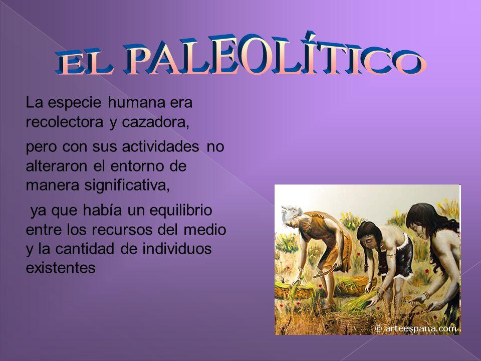 Se introdujo la práctica agrícola y la domesticación de animales.
