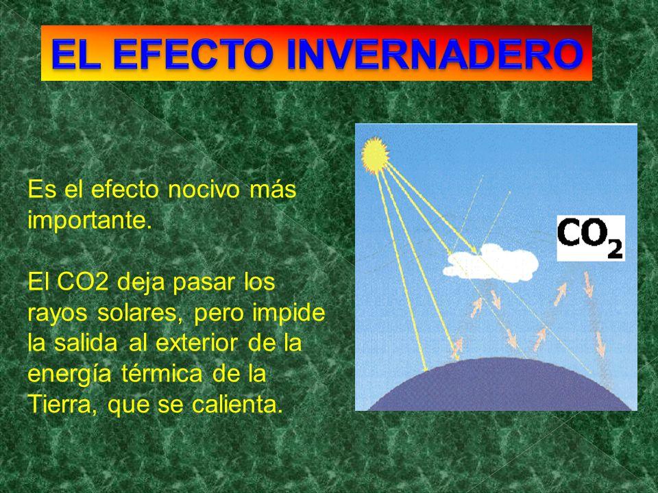 Es el efecto nocivo más importante. El CO2 deja pasar los rayos solares, pero impide la salida al exterior de la energía térmica de la Tierra, que se