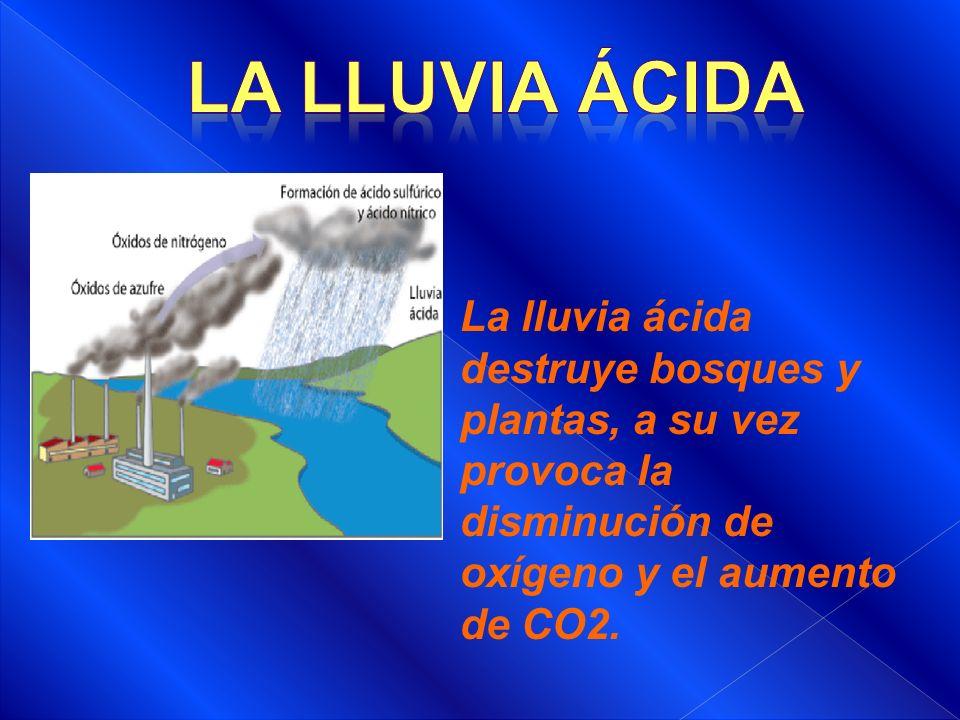 La lluvia ácida destruye bosques y plantas, a su vez provoca la disminución de oxígeno y el aumento de CO2.