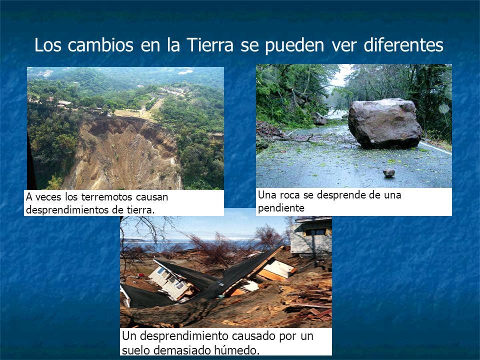 Estas imágenes muestran la misma carretera.¿Qué pueden inferir sobre las causas de cada cambio.