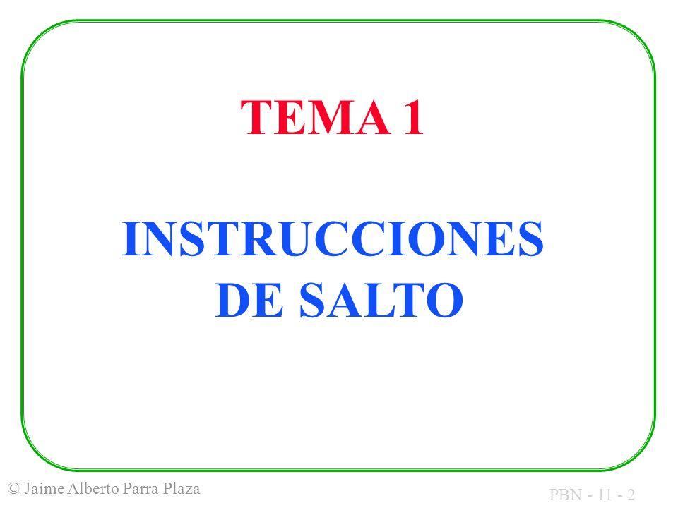 PBN - 11 - 2 © Jaime Alberto Parra Plaza TEMA 1 INSTRUCCIONES DE SALTO