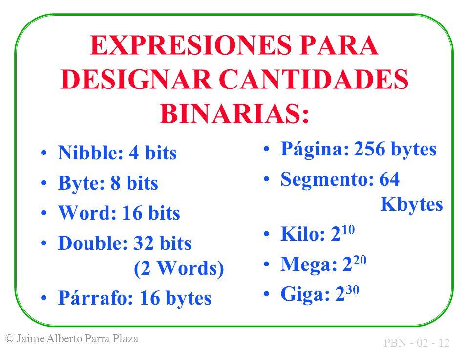 PBN - 02 - 12 © Jaime Alberto Parra Plaza EXPRESIONES PARA DESIGNAR CANTIDADES BINARIAS: Página: 256 bytes Segmento: 64 Kbytes Kilo: 2 10 Mega: 2 20 G