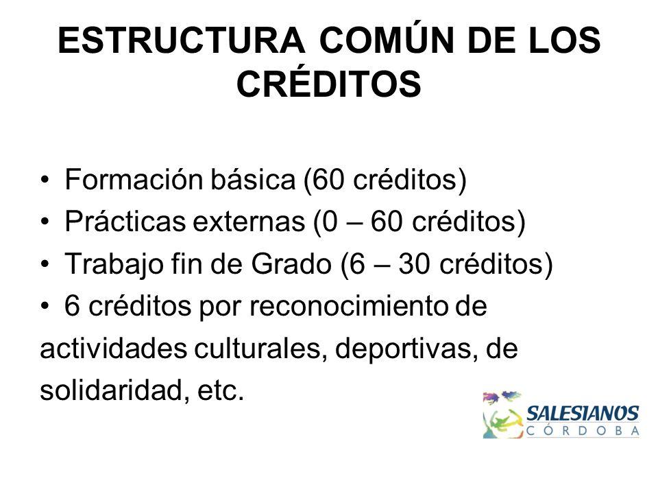 ESTRUCTURA COMÚN DE LOS CRÉDITOS Formación básica (60 créditos) Prácticas externas (0 – 60 créditos) Trabajo fin de Grado (6 – 30 créditos) 6 créditos por reconocimiento de actividades culturales, deportivas, de solidaridad, etc.