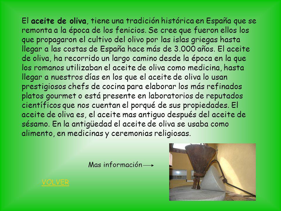 El aceite de oliva, tiene una tradición histórica en España que se remonta a la época de los fenicios. Se cree que fueron ellos los que propagaron el