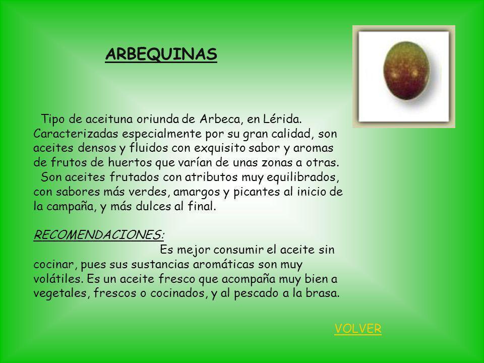 Tipo de aceituna oriunda de Arbeca, en Lérida. Caracterizadas especialmente por su gran calidad, son aceites densos y fluidos con exquisito sabor y ar