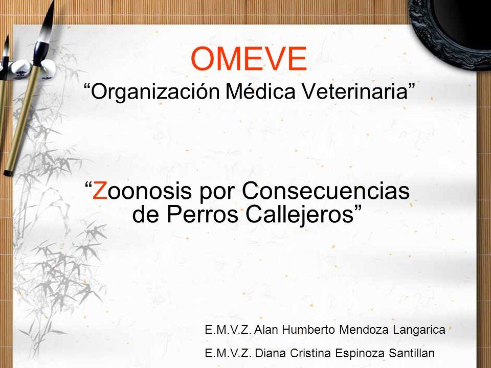 OMEVE Organización Médica Veterinaria Zoonosis por Consecuencias de Perros Callejeros E.M.V.Z. Alan Humberto Mendoza Langarica E.M.V.Z. Diana Cristina