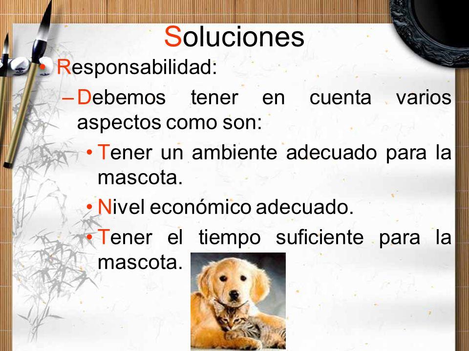 Soluciones Responsabilidad: –Debemos tener en cuenta varios aspectos como son: Tener un ambiente adecuado para la mascota. Nivel económico adecuado. T