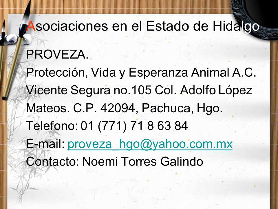 PROVEZA. Protección, Vida y Esperanza Animal A.C. Vicente Segura no.105 Col. Adolfo López Mateos. C.P. 42094, Pachuca, Hgo. Telefono: 01 (771) 71 8 63