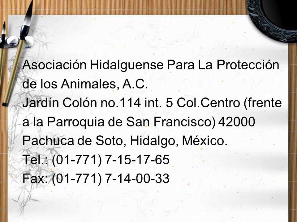 Asociación Hidalguense Para La Protección de los Animales, A.C. Jardín Colón no.114 int. 5 Col.Centro (frente a la Parroquia de San Francisco) 42000 P