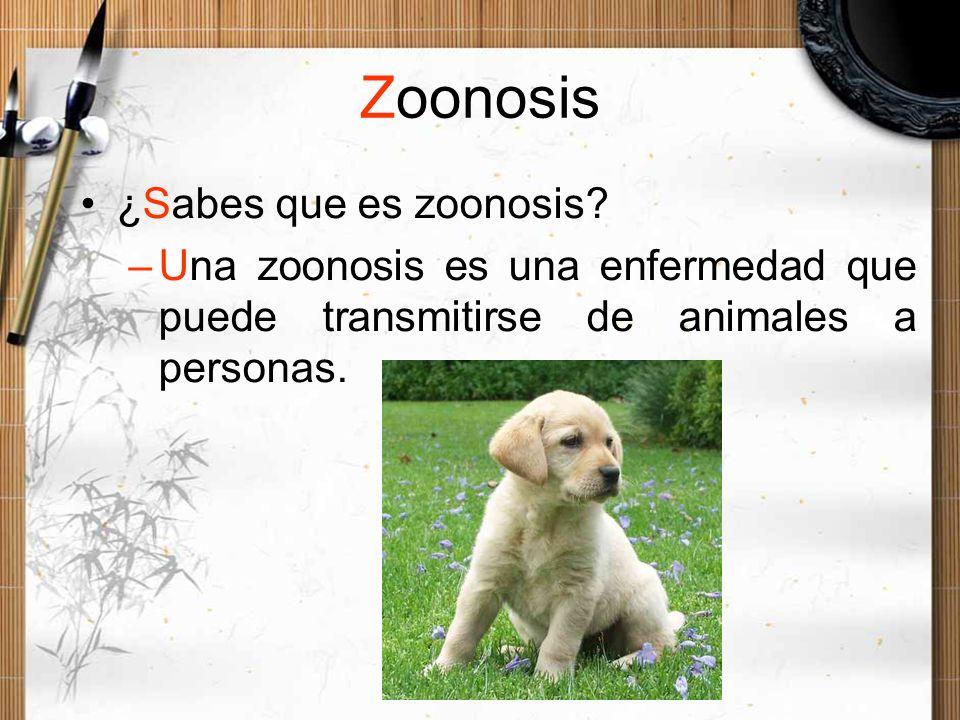 Zoonosis ¿Sabes que es zoonosis? –Una zoonosis es una enfermedad que puede transmitirse de animales a personas.