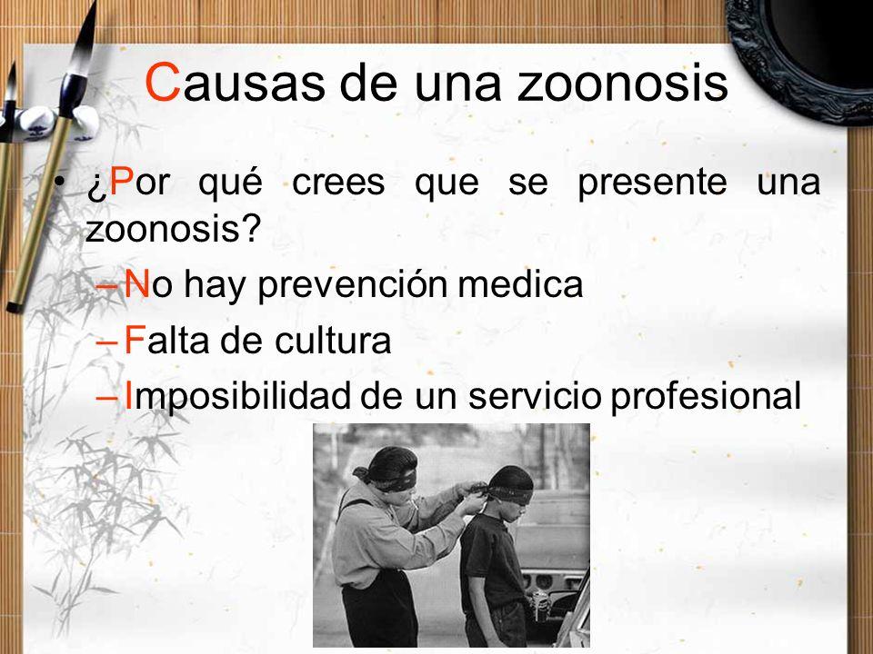 Causas de una zoonosis ¿Por qué crees que se presente una zoonosis? –No hay prevención medica –Falta de cultura –Imposibilidad de un servicio profesio