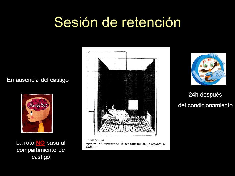 Sesión de retención En ausencia del castigo 24h después del condicionamiento La rata NO pasa al compartimiento de castigo