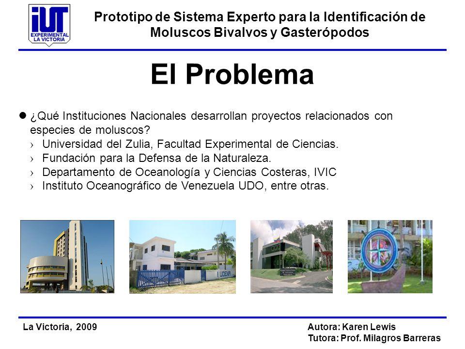 Prototipo de Sistema Experto para la Identificación de Moluscos Bivalvos y Gasterópodos La Victoria, 2009Autora: Karen Lewis Tutora: Prof. Milagros Ba