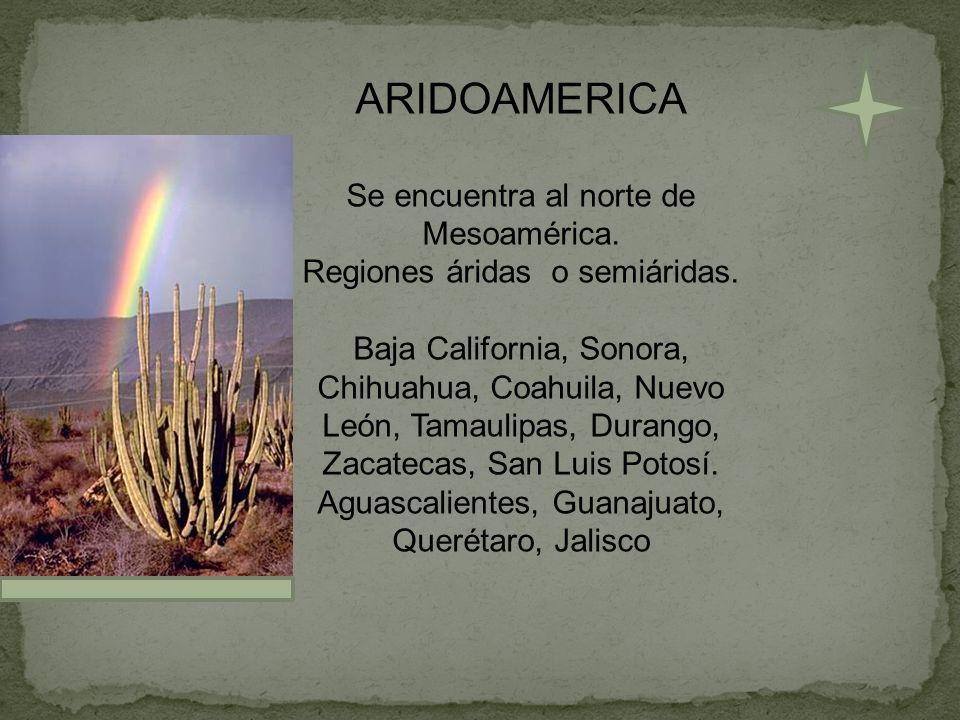 ARIDOAMERICA Se encuentra al norte de Mesoamérica. Regiones áridas o semiáridas. Baja California, Sonora, Chihuahua, Coahuila, Nuevo León, Tamaulipas,