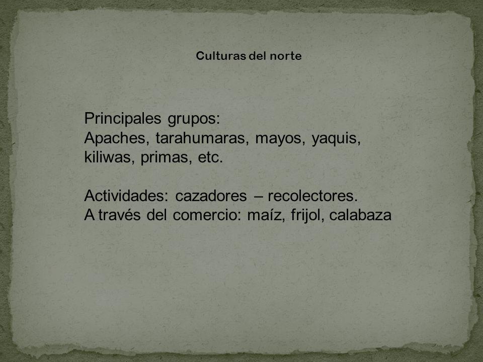 Culturas del norte Principales grupos: Apaches, tarahumaras, mayos, yaquis, kiliwas, primas, etc. Actividades: cazadores – recolectores. A través del