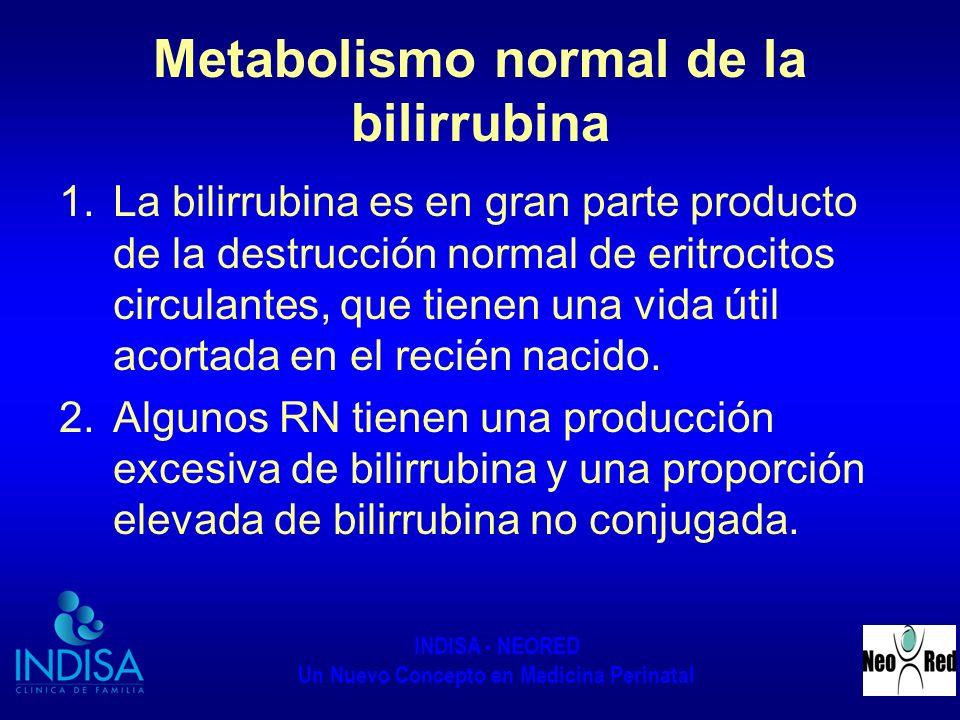 INDISA - NEORED Un Nuevo Concepto en Medicina Perinatal Metabolismo normal de la bilirrubina 1.La bilirrubina es en gran parte producto de la destrucc