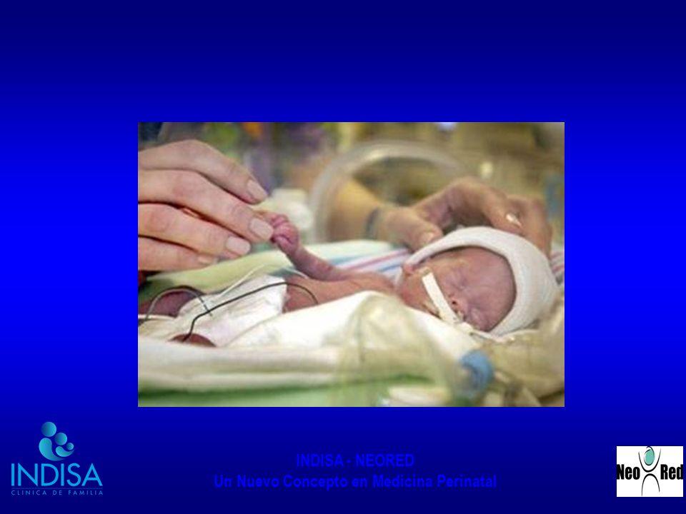 INDISA - NEORED Un Nuevo Concepto en Medicina Perinatal