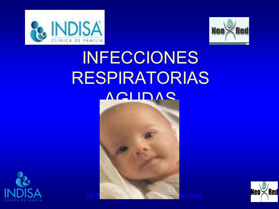 INDISA - NEORED Un Nuevo Concepto en Medicina Perinatal INFECCIONES RESPIRATORIAS AGUDAS