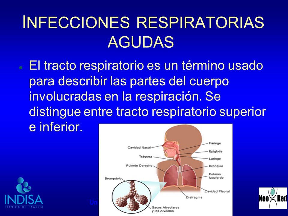 INDISA - NEORED Un Nuevo Concepto en Medicina Perinatal I NFECCIONES RESPIRATORIAS AGUDAS El tracto respiratorio es un término usado para describir la