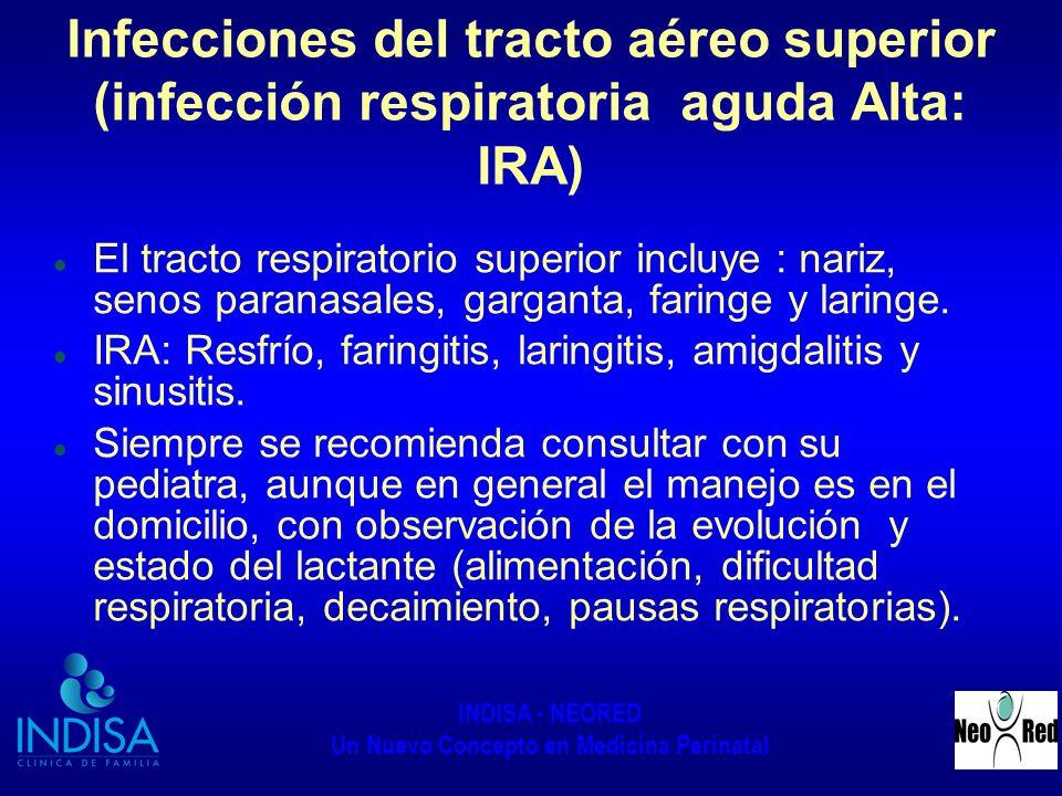 INDISA - NEORED Un Nuevo Concepto en Medicina Perinatal Infecciones del tracto aéreo superior (infección respiratoria aguda Alta: IRA) El tracto respi