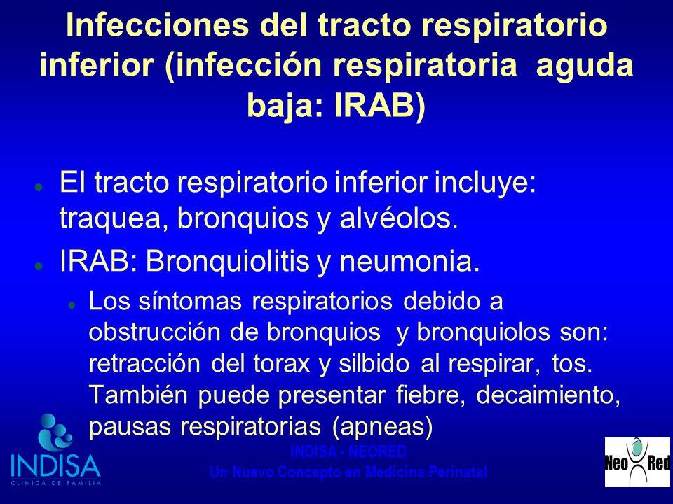 INDISA - NEORED Un Nuevo Concepto en Medicina Perinatal Infecciones del tracto respiratorio inferior (infección respiratoria aguda baja: IRAB) El trac