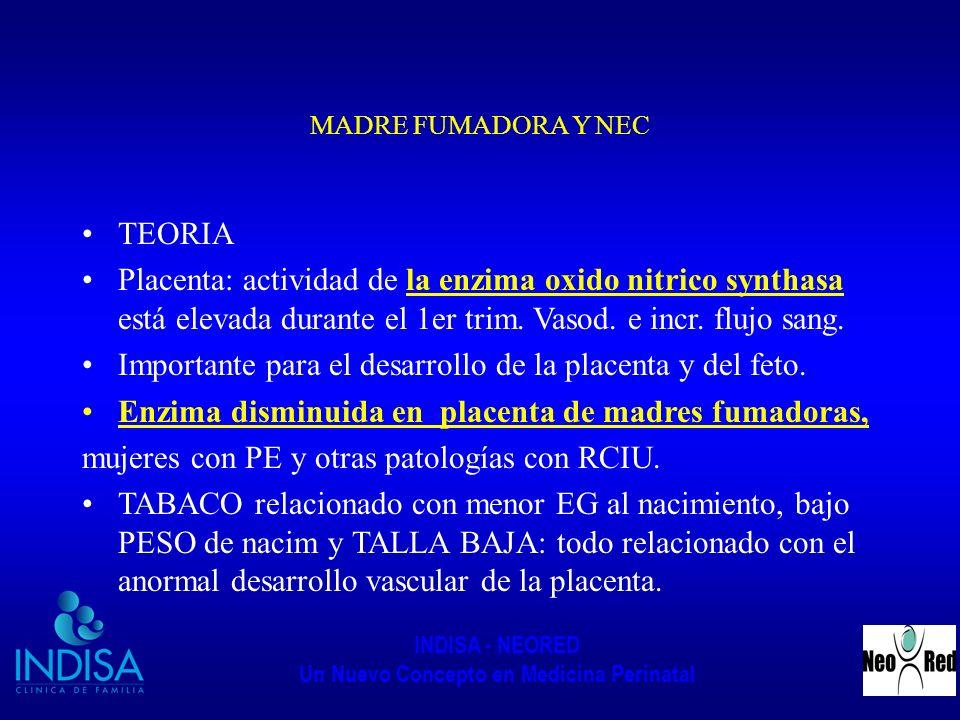 INDISA - NEORED Un Nuevo Concepto en Medicina Perinatal MADRE FUMADORA Y NEC TEORIA Placenta: actividad de la enzima oxido nitrico synthasa está eleva
