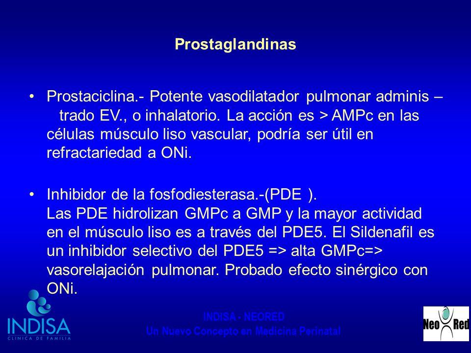 INDISA - NEORED Un Nuevo Concepto en Medicina Perinatal Prostaglandinas Prostaciclina.- Potente vasodilatador pulmonar adminis – trado EV., o inhalato