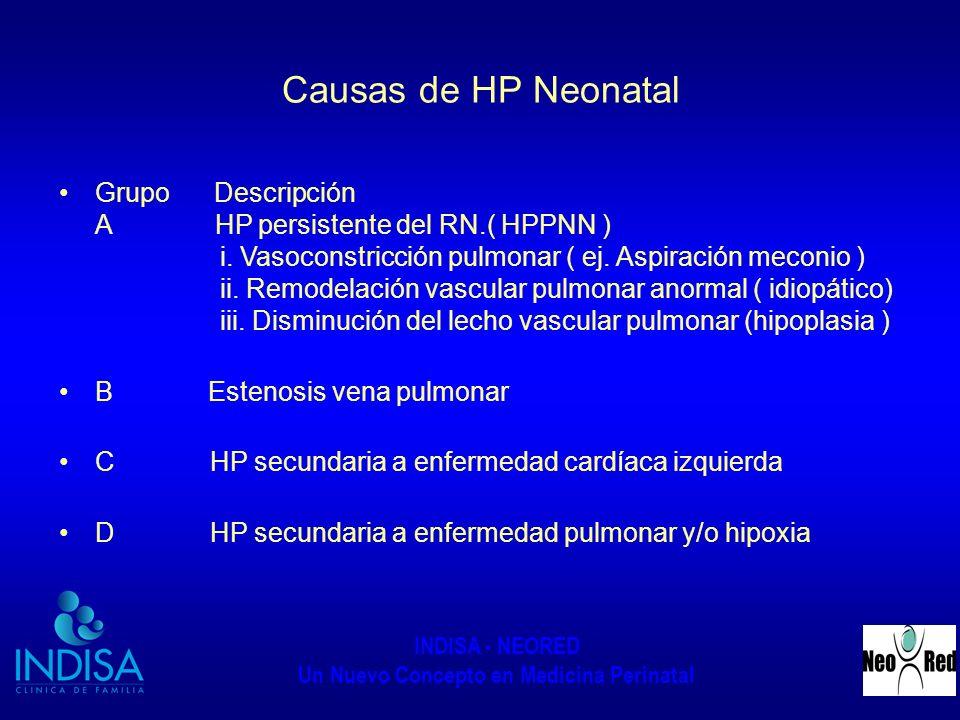 INDISA - NEORED Un Nuevo Concepto en Medicina Perinatal Causas de HP Neonatal Grupo Descripción A HP persistente del RN.( HPPNN ) i. Vasoconstricción