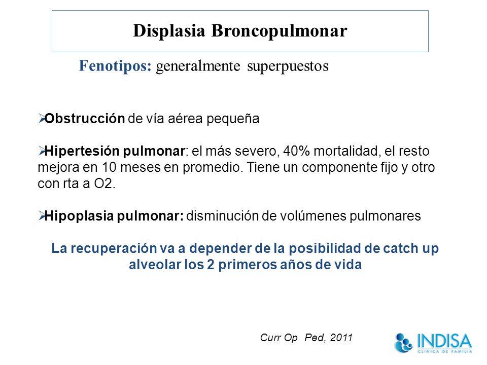 Displasia Broncopulmonar Fenotipos: generalmente superpuestos Obstrucción de vía aérea pequeña Hipertesión pulmonar: el más severo, 40% mortalidad, el resto mejora en 10 meses en promedio.