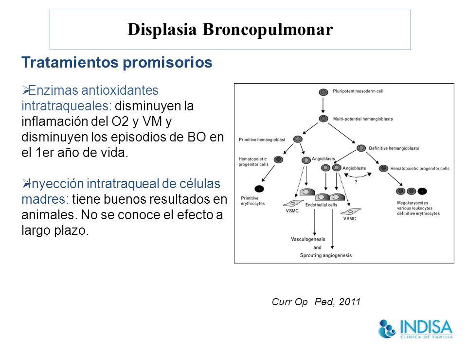 Displasia Broncopulmonar Enzimas antioxidantes intratraqueales: disminuyen la inflamación del O2 y VM y disminuyen los episodios de BO en el 1er año de vida.