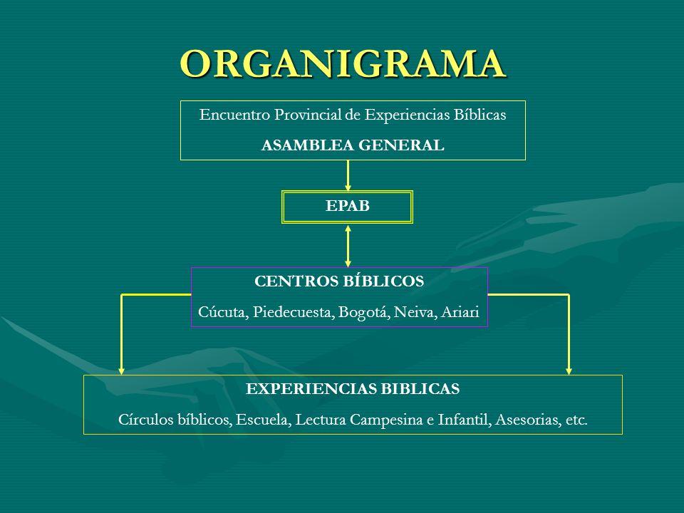 ORGANIGRAMA Encuentro Provincial de Experiencias Bíblicas ASAMBLEA GENERAL EPAB CENTROS BÍBLICOS Cúcuta, Piedecuesta, Bogotá, Neiva, Ariari EXPERIENCI