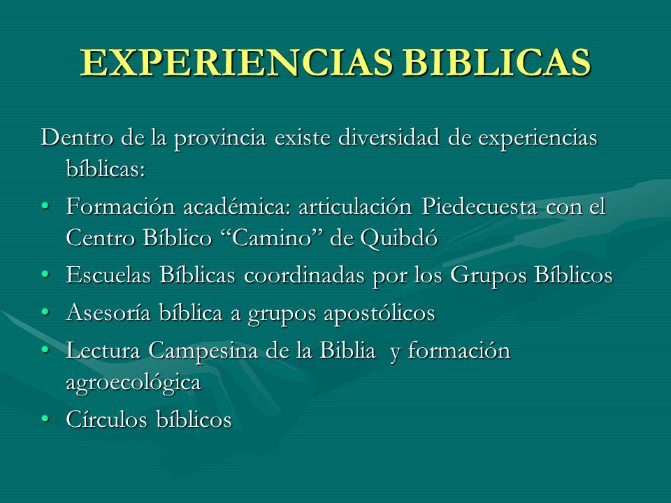EXPERIENCIAS BIBLICAS Dentro de la provincia existe diversidad de experiencias bíblicas: Formación académica: articulación Piedecuesta con el Centro B