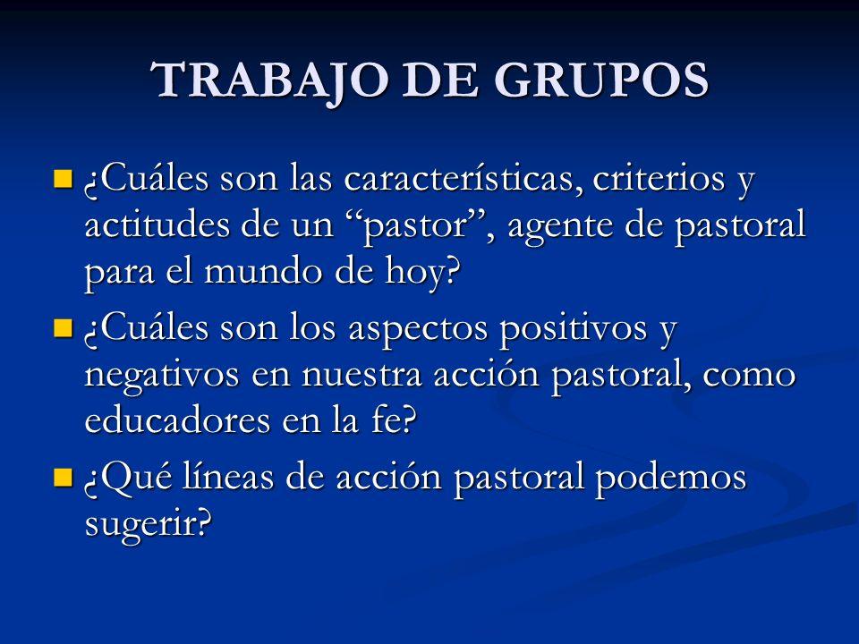 TRABAJO DE GRUPOS ¿Cuáles son las características, criterios y actitudes de un pastor, agente de pastoral para el mundo de hoy? ¿Cuáles son las caract