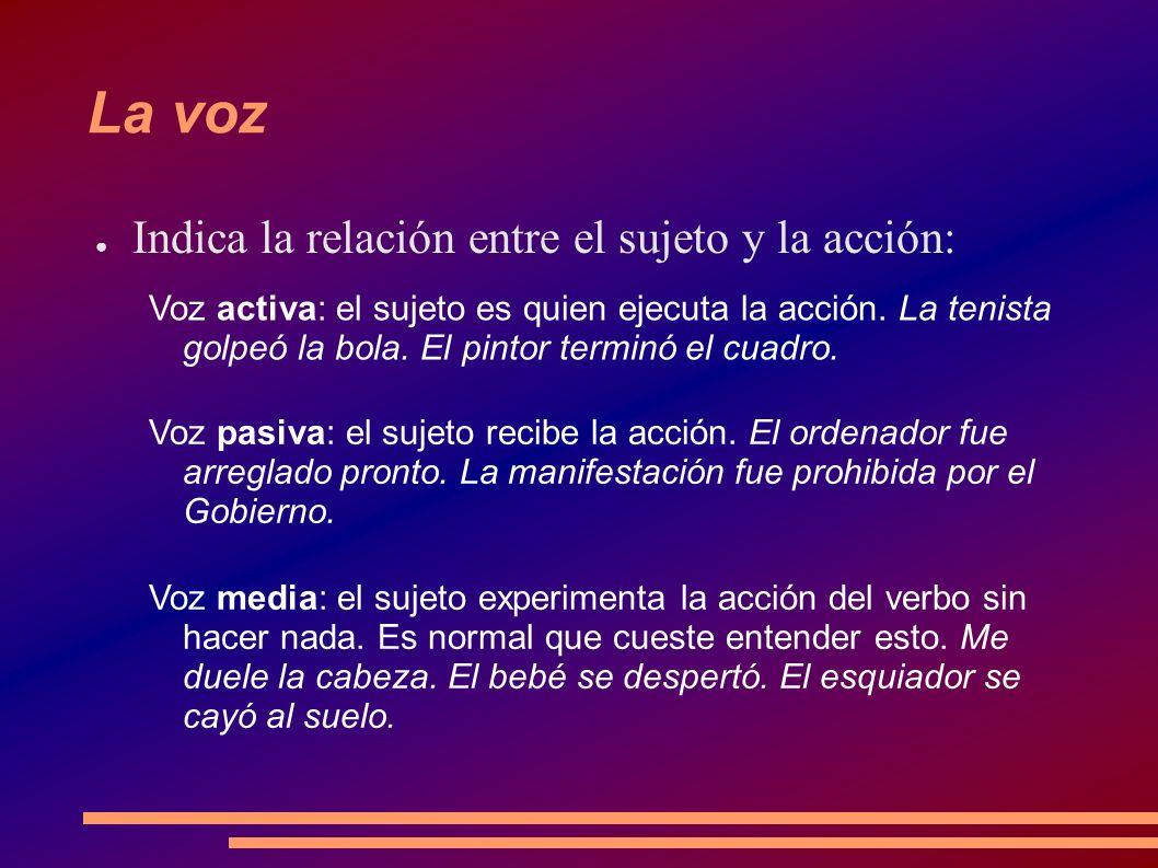 Tipos de verbo por su significado Existen dos grandes tipos de verbo: Verbos copulativos: Cópula significa unión.