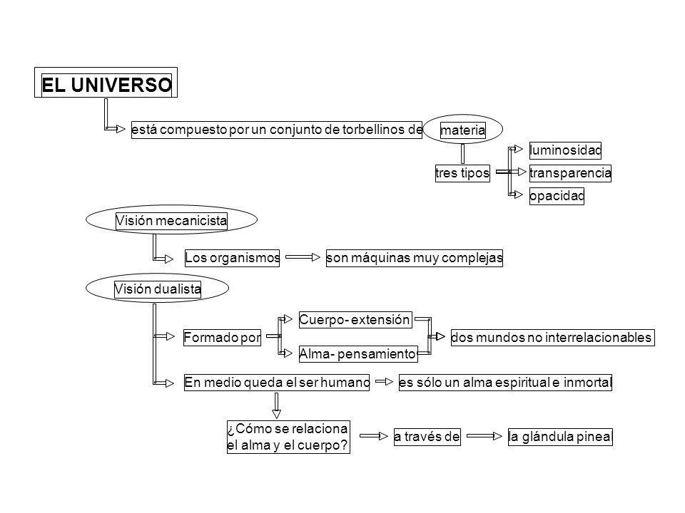 EL UNIVERSO está compuesto por un conjunto de torbellinos de materia tres tipos luminosidad transparencia opacidad Visión mecanicista Los organismosso