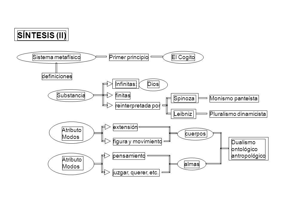 SÍNTESIS (II) Sistema metafísicoPrimer principioEl Cogito definiciones Substancia Infinitas:Dios finitas reinterpretada por SpinozaMonismo panteísta L
